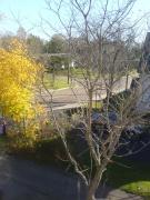 Autumn.1